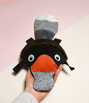 Dziobak czarny